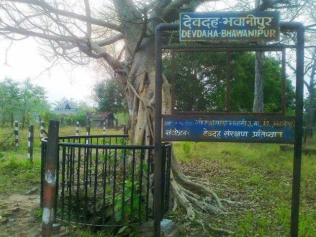 Devdaha