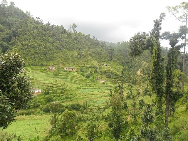 Rupal village