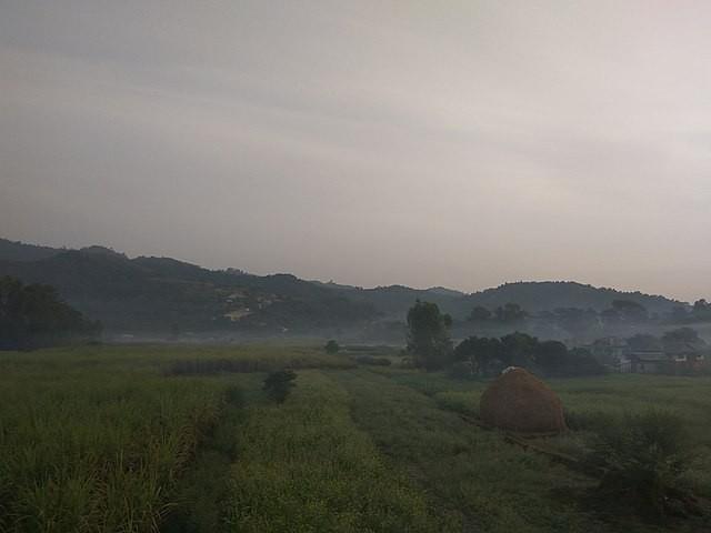 Sarlahi field